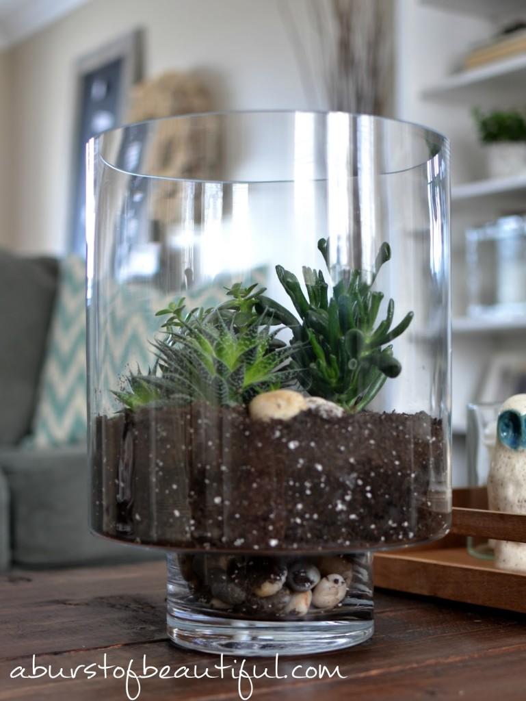 Easy DIY Succulent Gardens