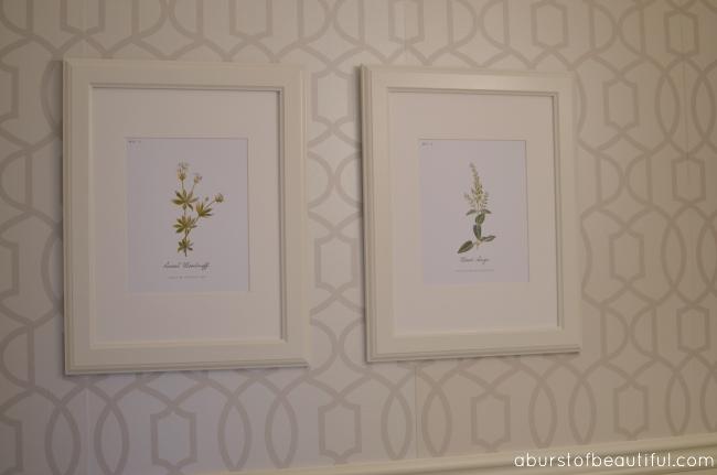Free Vintage Inspired Botanical Printables
