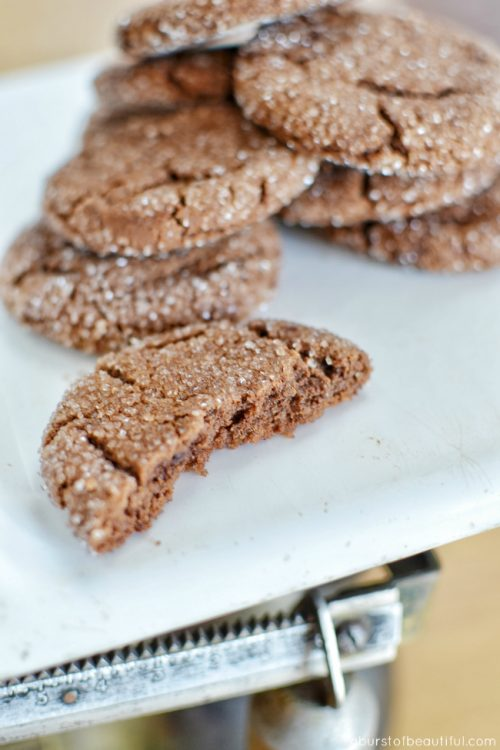 Gluten Free Chocolate Peanut Butter Cookies