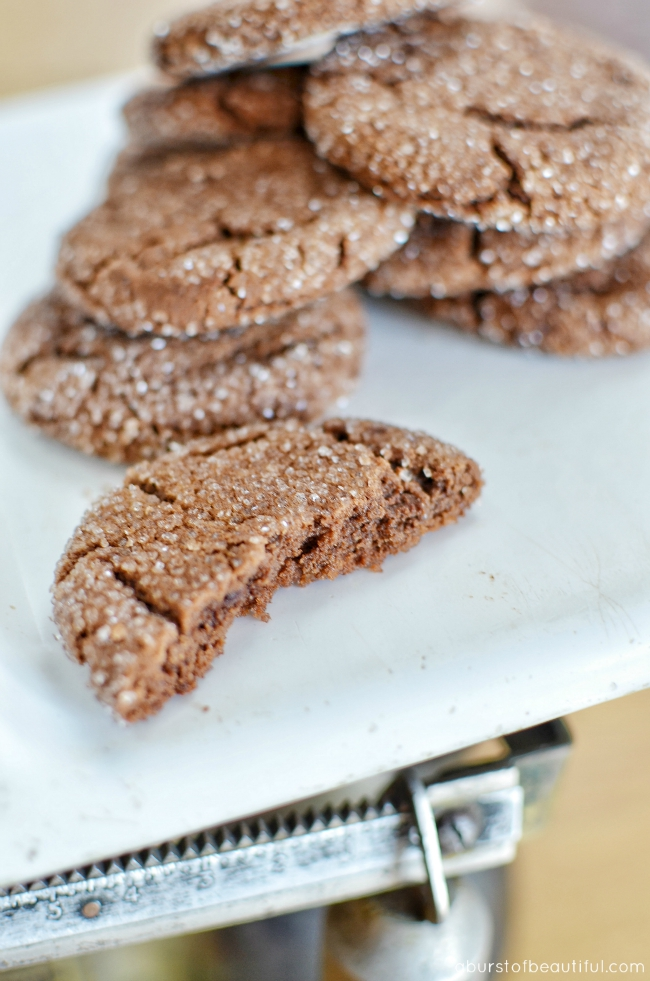 Chocolate Peanut Butter Cookies Gluten Free