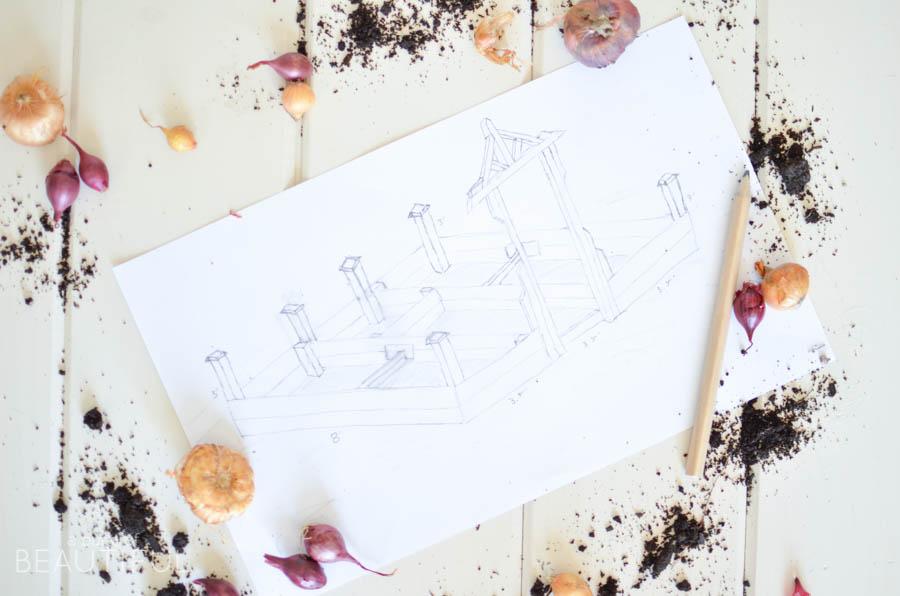 Planning Our First Vegetable Garden