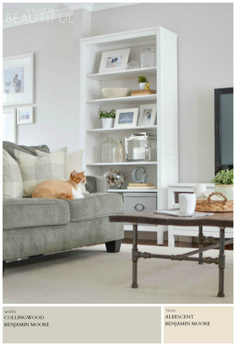 Collingwood by Benjamin Moore is a classic and versatile color for any space. A Burst of Beautiful shares the perfect Modern Farmhouse Neutral Paint Colors for a cozy and inviting home   A Burst of Beautiful