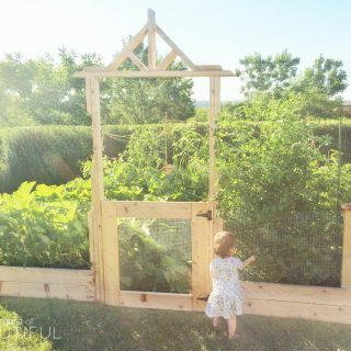 Square Foot Gardening Tips – What we've learned after the first season