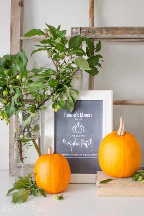 Pumpkin Patch Fall Printable