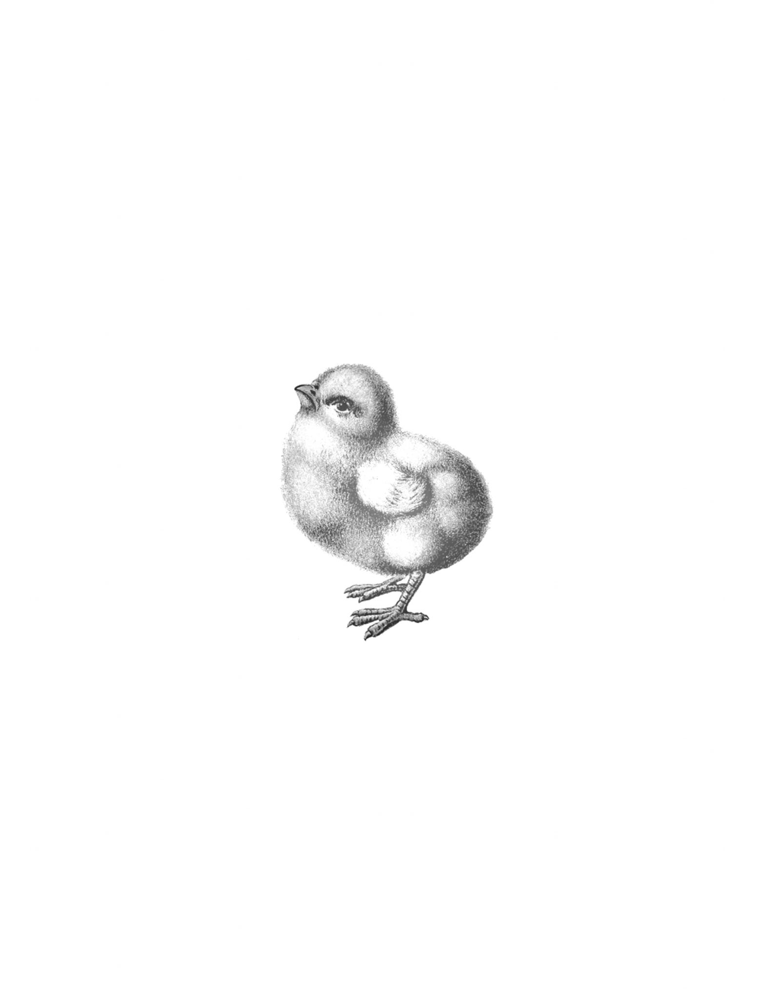 A simple sketch of a baby chick is a subtle nod to the Easter holiday. Download it here, along with 29 other free Easter printables.