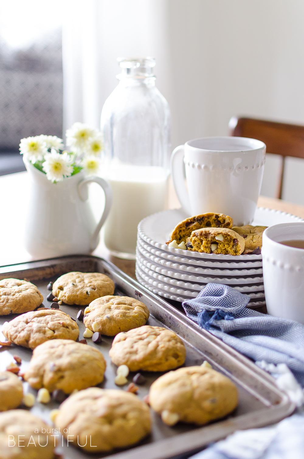 Plan your fall baking with these Pumpkin Pecan Chocolate Chip Cookies and 15+ pumpkin recipes