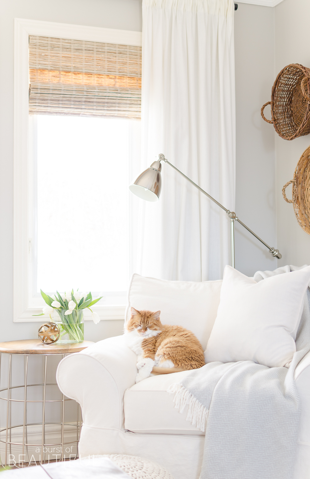 The right window treatments have the ability to elevate any space by adding texture, color, and detail. We are sharing our favorites, woven wood shades, roman shades and drapery panels, and how to get the right look in your home.